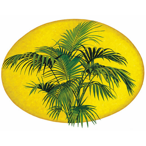 Kentia Palm Lord Howe Island Margaret Murray Art